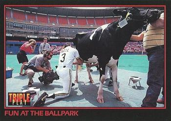 1993 Triple Play #261 Jay Bell / Fun at the Ballpark Front