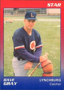1989 Star Lynchburg Red Sox #9 Dave Gray Front