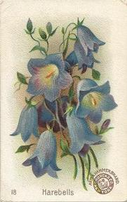 1895 Arm & Hammer Beautiful Flowers (J16) #18 Harebells Front