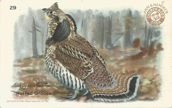 1931 Church & Dwight Useful Birds of America Fourth Series (J8) #29 Ruffed Grouse Front