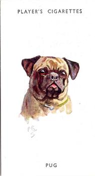 1955 John Player & Sons Dogs' Head (P. Digel Paintings) #21 Pug Front