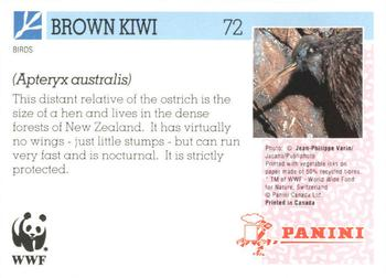 1992 Panini Wildlife In Danger #72 Brown Kiwi Back